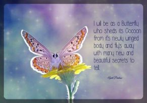 Do not judge me for who I was or even for who I am now because I am bound to evolve Worldly and Spiritually up until my body dies. Then I will be as a butterfly who sheds its Cocoon from it's newly winged body and fly's away with many new and beautiful secrets to tell. ©April Peerless 2013