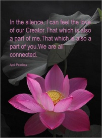 In the silence, I can feel the love of our Creator. That which is also a part of me. That which is also a part of you. We are all connected. April Peerless2013