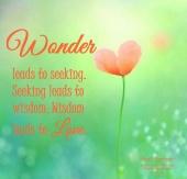 Wonder leads to seeking. Seeking leads to wisdom. Wisdom leads to love. April Peerless