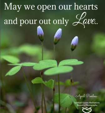 As the first blossoms during spring begin to open, may we also open our hearts and pour out only love in each season of the year. April Peerless SQMBP
