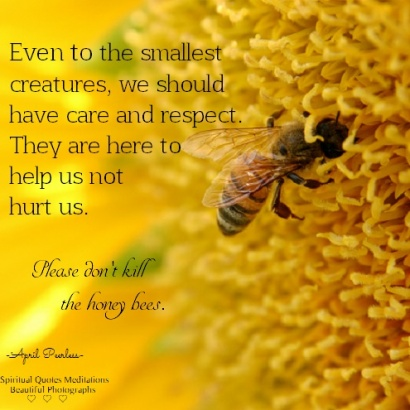 Even to the smallest creatures, we should have care and respect. They are here to help us not hurt us. Please don't kill the honey bees. . April Peerless